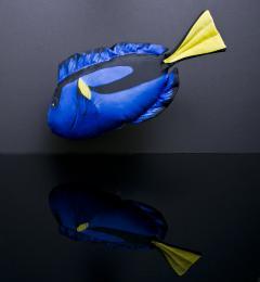 Plyšový polštář Dory - Bodlok pestrý 45cm - Hledá se Nemo - zvětšit obrázek