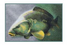 Rohožka Delphin 3D Kapr 60x40 cm - zvětšit obrázek