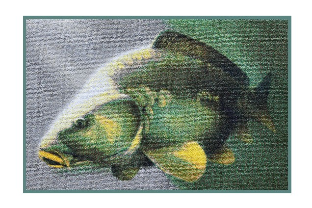 Rohožka Delphin 3D Kapr 60x40 cm - zvìtšit obrázek