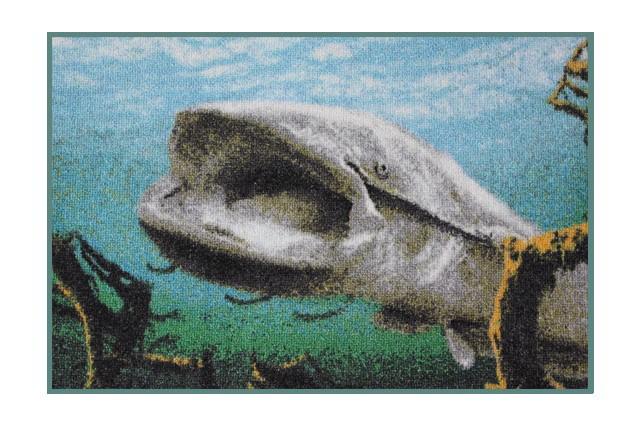 Rohožka Delphin 3D Sumec pod hladinou 60x40 cm - zvìtšit obrázek